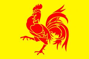 Бельгия Флаг Валлонии